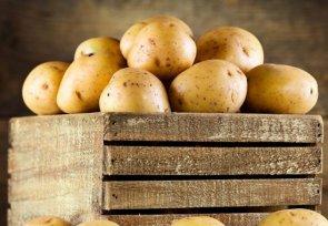 Как меняется состав картофеля во время хранения